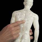 How acupuncture works – from a Western perspective