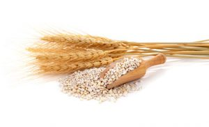 Barley grains should be removed on a 4R program