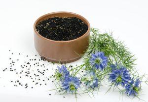 Nigella sativa also known as black cumin