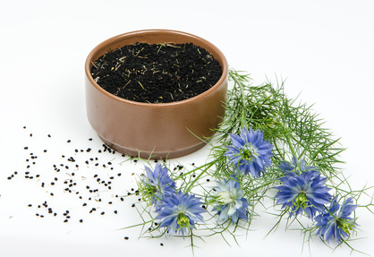 Nigella sativa also known as black cumin
