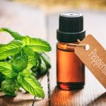 Peppermint and recurrent cold sore infections