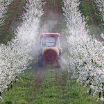 Pesticides linked to autism and other chronic diseases