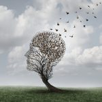 preserve your brain health with meditation