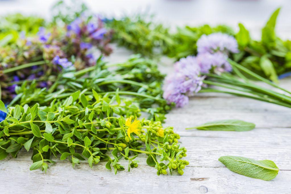 herbs prescribed by medical herbalist online